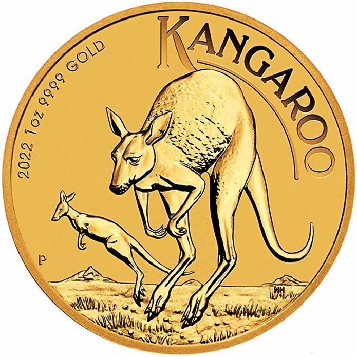 Australian Gold Kangaroo  (Australijski Złoty Kangur)