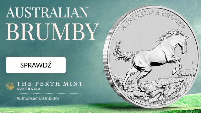 Australijski dziki koń - Brumby